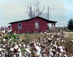 Built Rite Sheds Brookhaven Ms by 94 Best Delta Home Of Cotton Images On Pinterest Mississippi