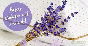 besser schlafen mit lavendel die besten tipps und rezepte