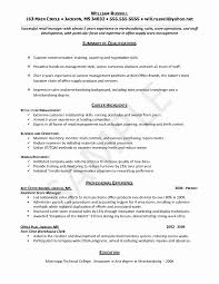 Resume Summary Examples Entry Level Best Of Objectives Professional Resumes Example Objective For