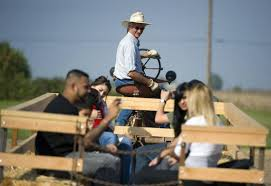 Bishops Pumpkin Farm Employment by Pumpkin Harvest Ready And Waiting The Sacramento Bee