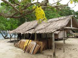 100 The Leaf House FileA Village House With A New Sago Palm Leaf Roof Ready To