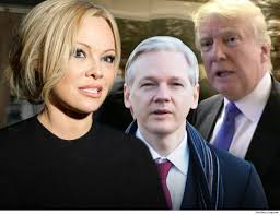 100 Pam Anderson House Blasts Trump Britain After Julian Assanges Arrest In