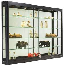 Wall Units Interesting Built In Display Case Custom Collectible Cabinet