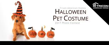 Halloween Express Charlotte Nc by Halloween Pet Costume Contest Tricon American Homes