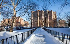NYCHA Braces for Impending Bud Cuts Affordable Housing line
