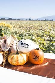 Varieties Of Pumpkins by Albertsons Meet Local The Story Of Bay Baby Produce U0027s Charming