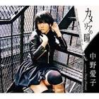 中野愛子 (シンガーソングライター)
