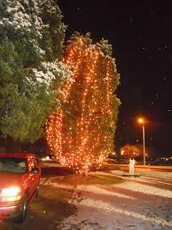 Ge Fraser Fir Christmas Tree by Ge Pre Lit Christmas Trees Artificial Christmas Trees The