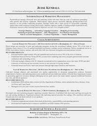 Sales Manager Resume Sample Doc