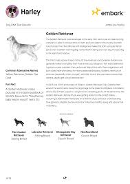 Chesapeake Bay Retriever Shed Hunting by Embark Print Results Angellist