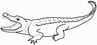 Click To See Printable Version Of Alligator Coloring Page