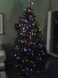 Tannenbaum Christmas Tree Farm Kelowna by Mein Halbjahr In Canada Ich Werde Vom 23 08 02 02 Den