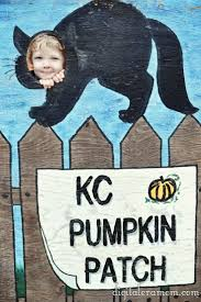 Best Pumpkin Patch Snohomish by 23 Best Pumpkin Patches Images On Pinterest Pumpkin Patches