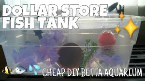 Spongebob Aquarium Decorating Kit by Dollar Store Fish Tank How To Make A Complete Betta Aquarium For