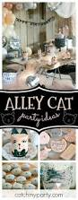 Outrageous Cubicle Birthday Decorations by Best 25 Cat Themed Parties Ideas On Pinterest Cat Party Kitten