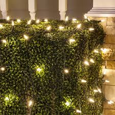 Great Outdoor Lighted Christmas Trees Meaningful Use Home Designs