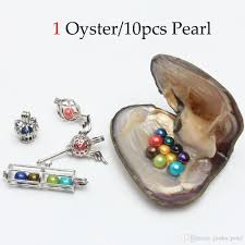 100 Where Is Dhgate Located 2019 2018 DIY 6 7mm Freshwater Akoya Oyster With Pearl Mixed Top