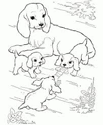 Puppy Dog Coloring Pages