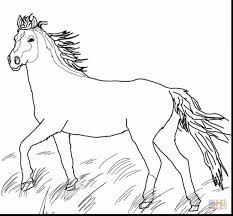 Weird Western Horse Coloring Pages Realistic 2650767