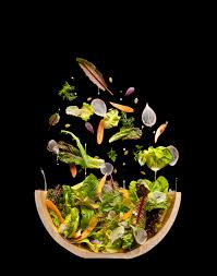 home cuisine modernist cuisine at home modernist cuisine