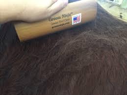 Horse Hair Shedding Tool by Review Groom Ninja Shedding Blade Velvet Rider