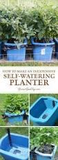 Xmas Tree Watering Devices by Best 25 Self Watering Ideas On Pinterest Self Watering Planter