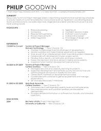 Resume Examples For A Project Manager Fruityidea