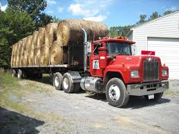 Hauling Hay - BMT Member's Gallery - Click Here To View Our Member's ... Filerefueling Hay Truckjpg Wikimedia Commons Highway 99 Reopens In South Sacramento After Hay Truck Fire Fox40 Semi Truck Load Of Kims County Line Did We Make A Small Stock Image Image Biological Agriculture 14280973 Boys Life Magazine Old With Photo Trucks Rusty 697938 Straw Trailers Mccauley Richs Cnection Peterbilt 379 At Truckin For Kids 2013 Youtube Hay Train West Coast Style V1 Truck Farming Simulator 2019 John Deere Frontier Implements Landscape Mowing Dowling Bermuda Celebrity Equine Llc