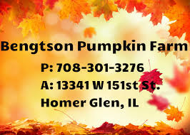 Bengtsons Pumpkin Patch Homer Glen Il by Pumpkin Patches Near Glendale Heights Il