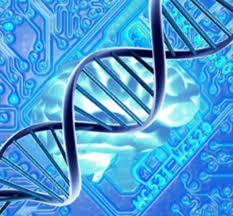 putational Biology Bio Informatics and Biometrics — Department