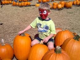 Big Orange Pumpkin Patch Celina Texas by Halloween Fun Haunted Houses And Pumpkin Patches In Collin County