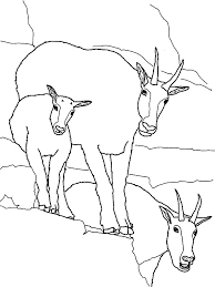 Mountain Goat Family Coloring Pages