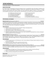 Career Objective Examples For Chef Resume Combined With