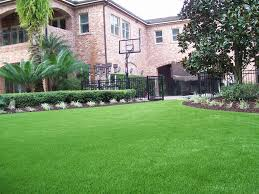 Residential Lawns | Just Like Grass Playful Dog Running Away From Ball White Labradoodle Putting Greens Golf Just Like Grass Tour Backyard Green Cost Synlawn Itallations Reviews Testimonials Our Diy Kids Theater Emily A Clark Unique Architecturenice Little Bit Funky How To Make A Backyard Putting Green Wood Fence On Colorful House Stock Vector 606411272 Concrete Ideas Hgtvs Decorating Design Blog Hgtv Puttinggreenscom One Story Siding With Lawn View From The
