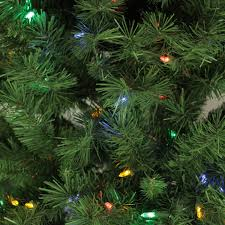 Slimline Christmas Trees With Lights by 7 U0027 Pre Lit Single Plug Slim Glacier Pine Artificial Christmas Tree
