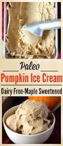 Paleo Pumpkin Custard Whole30 by Paleo Pumpkin Ice Cream Jay U0027s Baking Me Crazy
