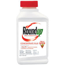 Roundup 16 Oz Concentrate Plus Weed And Grass Killer