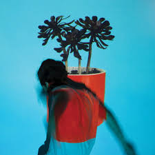 Local Natives Ceilings Live by Gorilla Manor By Local Natives On Apple Music
