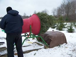 Christmas Tree Baler by Fly A Way Farm Choose And Cut Christmas Trees Delaware Oh