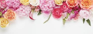 BloomThat Valentine's Day Promo: Get 15% Off Coupon! - Hello ... 12 Best Florists In Singapore With The Prettiest Fresh Enjoy Flowers Review Coupon Code September 2018 Whosale Flowers And Supplies San Diego Coupon Code Fryouflowerscom Valentines Day 15 Off Fall Winter Flower Walls The Wall Company 1800flowerscom Black Friday Sale Free Shipping 16 Farmgirl Flowers Discount Code Off Cactus Promo Ladybug Florist Cc Pizza Coupons Discount Teleflorist Wet Seal Discount 22 1800 Coupons Codes Deals 2019 Groupon Unique Free Delivery Beautiful Fruit Of Bloom