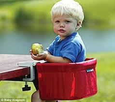 Phil And Teds Lobster High Chair by Government Issues Warning Over U0027unsafe U0027 Feeding Chairs Daily