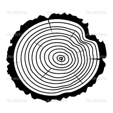 Wood Clipart Tree Log 4