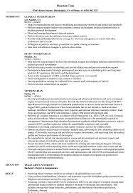 Download Veterinarian Resume Sample As Image File