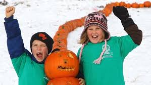 Largest Pumpkin Ever Carved by Longest Line Of Carved Pumpkins Calgary Breaks Guinness World