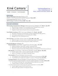 Impressive Resume Profile Diagrams Statement Best Of Personal Profiles