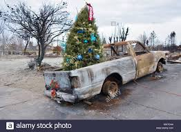 100 Burnt Truck A Decorated Christmas Tree In The Back Of A Burnt Truck Among The