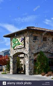 Olive Garden Stock Royalty Free Image Alamy