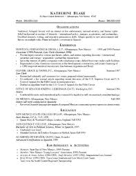 Resume Summary Template Samples Examples Of 4