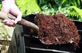 Garden Mulching Advantages and Disadvantages