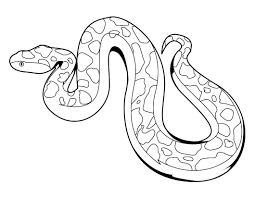 Snakes Coloring Pages Free Printable Snake For Kids Online